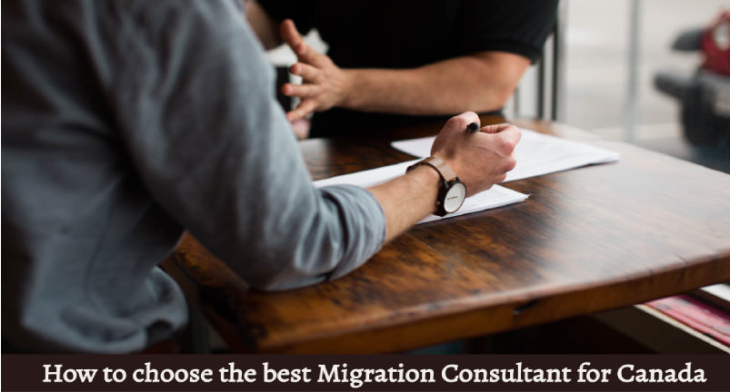 How to choose the best Migration Consultants for Canada Migration?